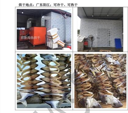 广东阳江海鱼烘干
